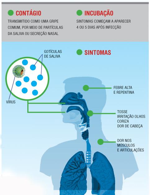 vmx-gripe-suina-03