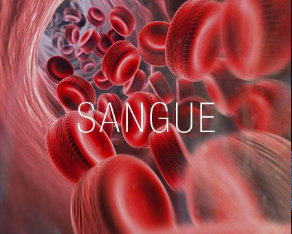 Resultado de imagem para purificação sanguina