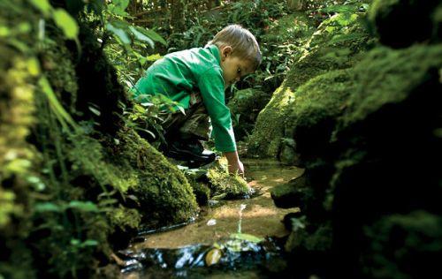 2013-será-o-Ano-Internacional-para-a-Cooperação-pela-Água