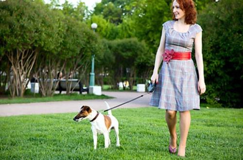 caociente-adestramento-de-caes-caminhada-cachorro2