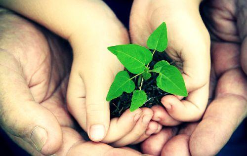 O-mundo-que-queremos-–-Consulta-da-ONU-para-um-futuro-sustentável