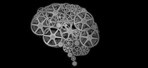cerebro site
