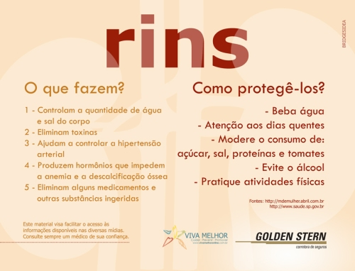 Campanha-RIM-2015